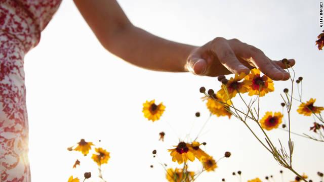 Global warming brings in more pollen