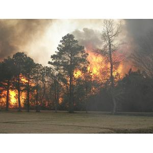 Smoke from Wildfire can be Hazardous